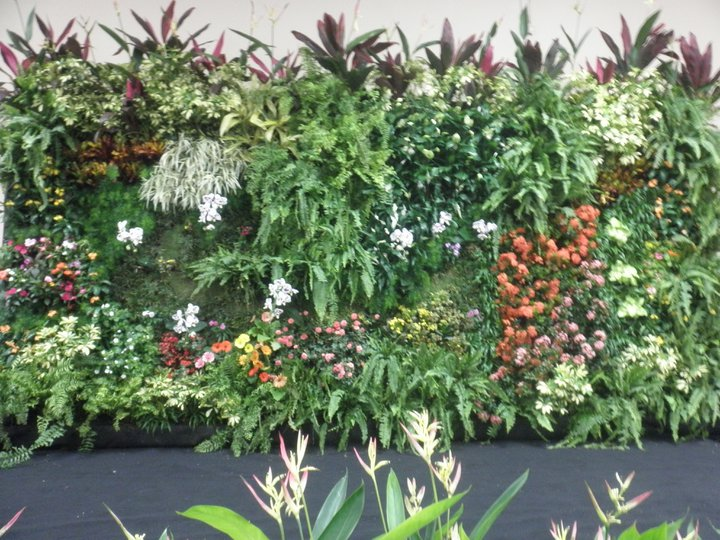 Texturas y colores en espacios verticales las hojas verdes for Jardines caseros colgantes