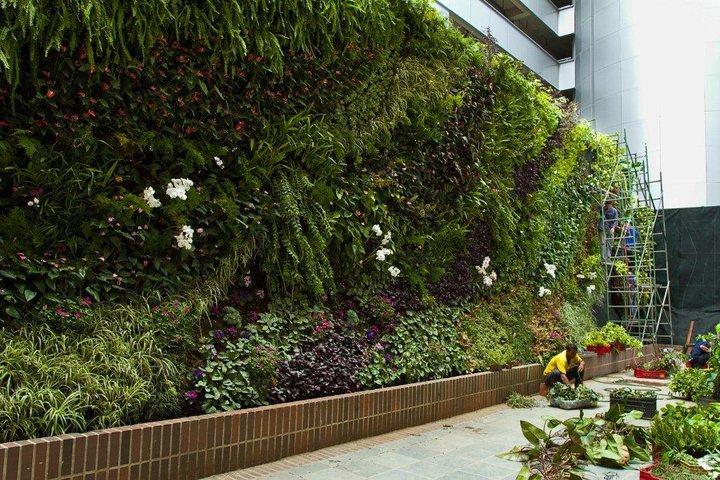 Texturas y colores en espacios verticales las hojas verdes for Jardines verticales construccion