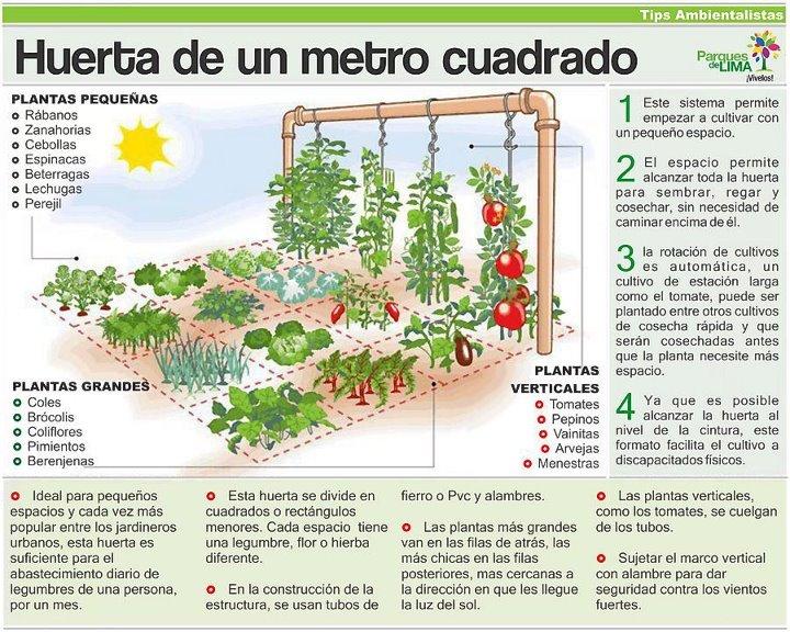 301 moved permanently for Huerto urbano que plantar